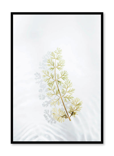 Modern minimalist botanical photography poster by Opposite Wall with floating leaf