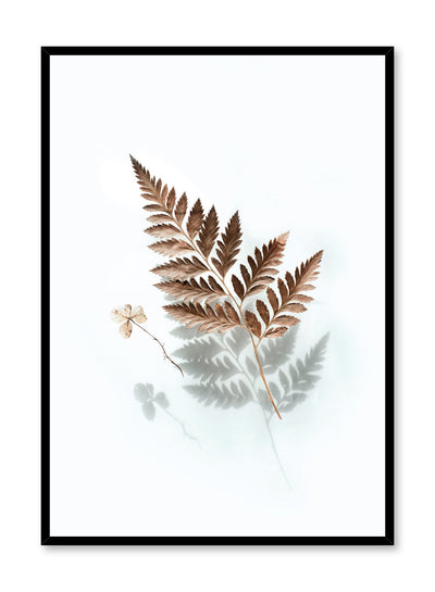 Modern minimalist botanical photography poster by Opposite Wall with floating fern leaf