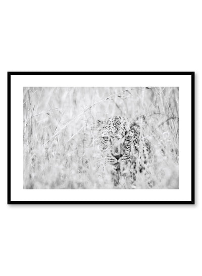 Kids nursery photography poster by Opposite Wall with leopard in grass