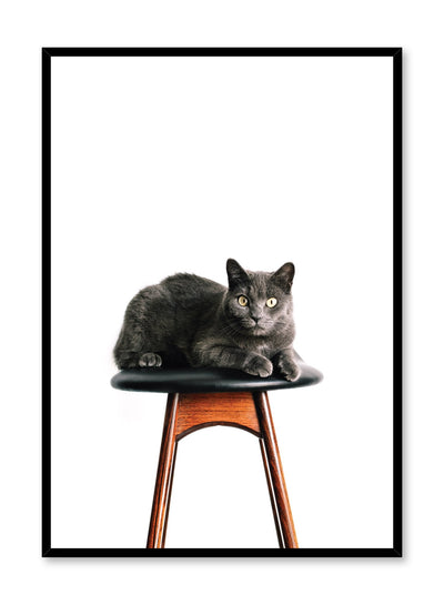 Kids nursery poster by Opposite Wall with photography of cat on chair
