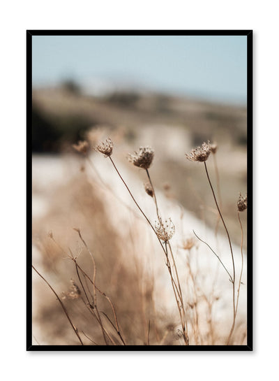 """Forest Bloom"" is a botanical photography poster by Opposite Wall of cold climate flowers in natural meadow landscape."