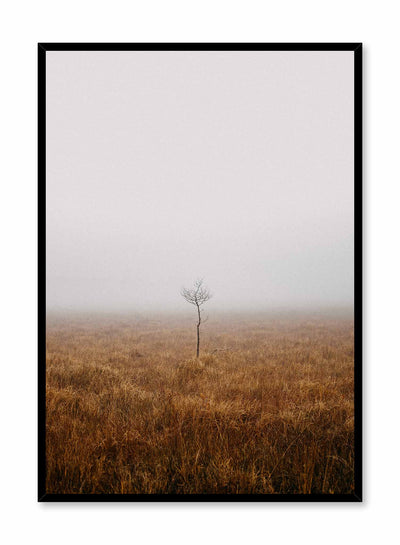 'Alone in the Mist' is a landscape photography poster by Opposite Wall of a lone barren tree in the middle of a vast and foggy grass field.