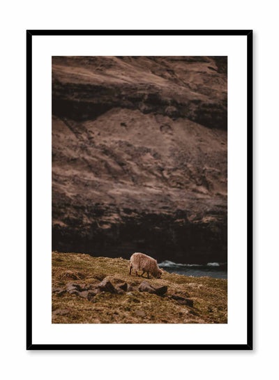 'Wandering Sheep' is a landscape photography poster by Opposite Wall of a lone white sheep wandering in green grass by a river and a tall rocky cliff.