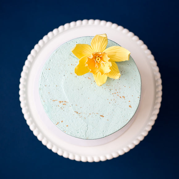 The Daffodil Vegan Cake | Vegan Chocolate & Coconut Swiss 'Meringue' Buttercream Cake