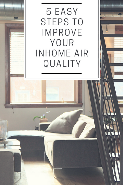 5 Easy Steps to Improve Your Inhome Air Quality