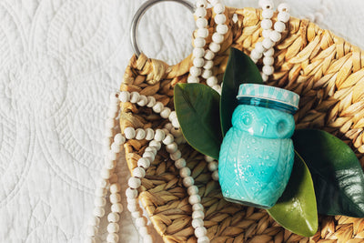 Owl Soy Candle Jar - Farmhouse Decor - Turquoise Home Accents - Aromatherapy
