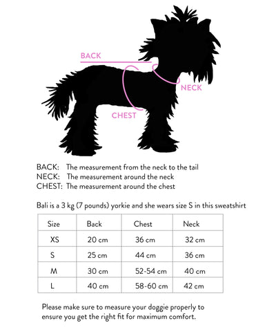 Bali the dog size guide for finding the right dog hoodie, dog t-shirt, dog sweatshirt, dog clothes, dog wear
