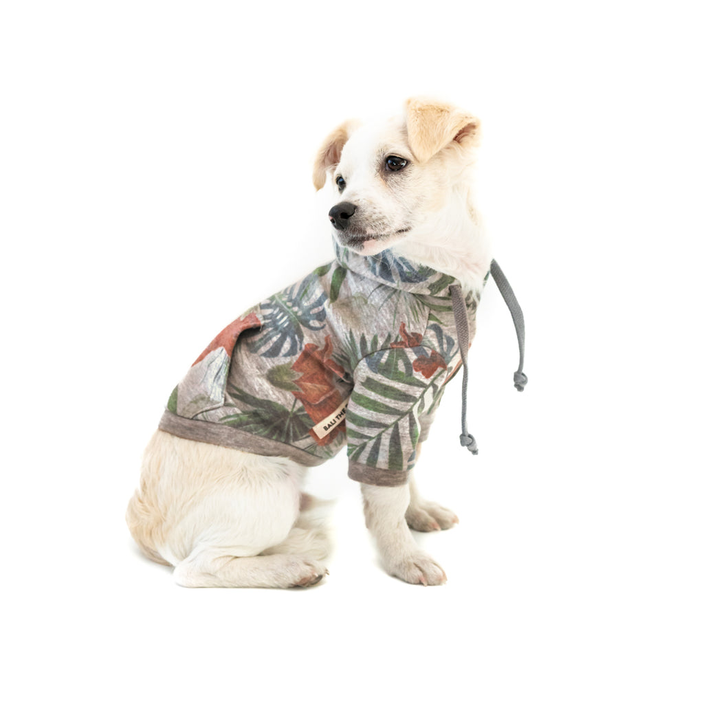 Bali the Dog Hoodie Jungle in grey melange, coolest palm print and a pocket in the back. Made from soft cotton, red stripes lining. Coolest dog clothes and dog gear from BalitheDog!