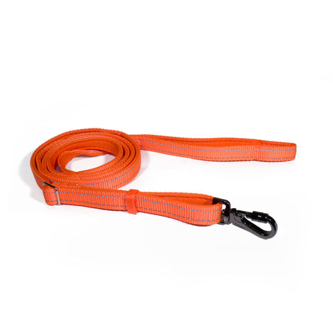Bali the Dog Reflective Dog leash mixed colors, orange dog leash with reflective details