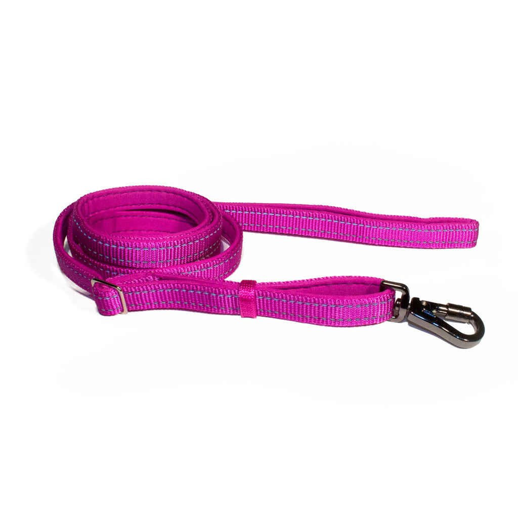 Bali the Dog Reflective Dog leash mixed colors, purple dog leash with reflective details