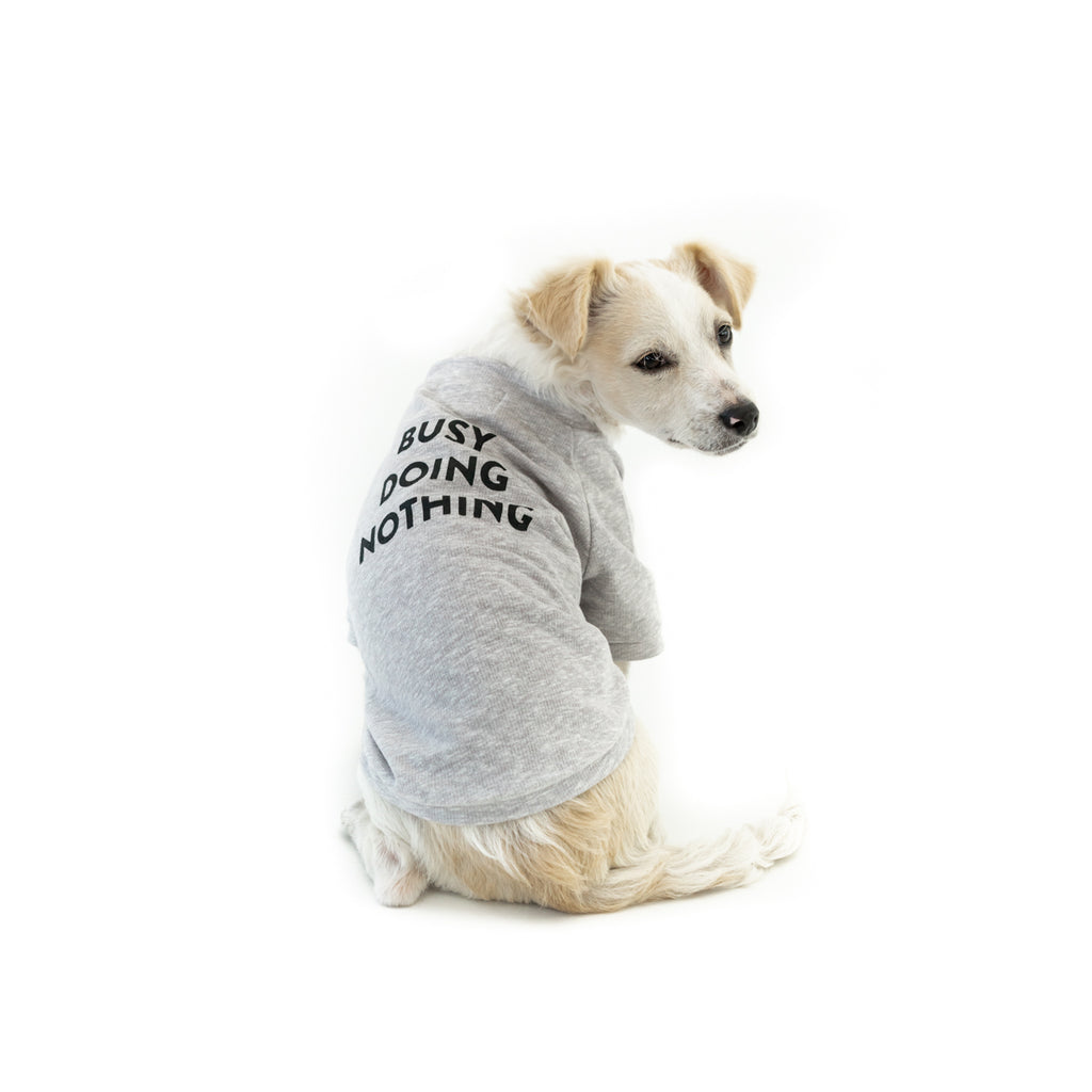 Bali the Dog Classic dog sweatshirt in grey melange, made from soft cotton. Black print on grey, busy doing nothing. Coolest dog clothes and dog gear from Bali the Dog