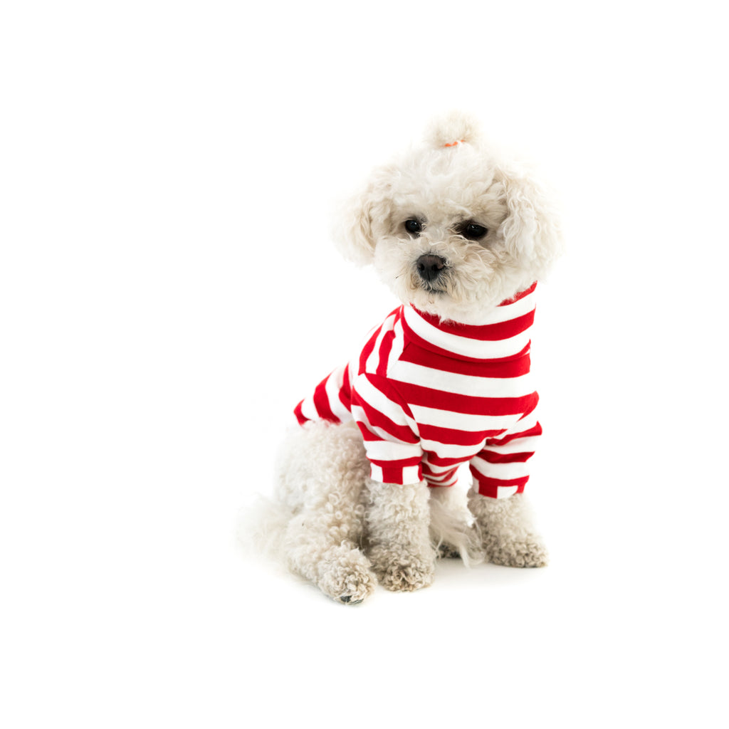 Bali the Dog Turtle T-shirt in classic red white stripes. Soft cotton t shirt, roll neck and Coco Chanel style. Coolest dog clothes and dog gear from Bali the Dog, for all dogs and dog owners!