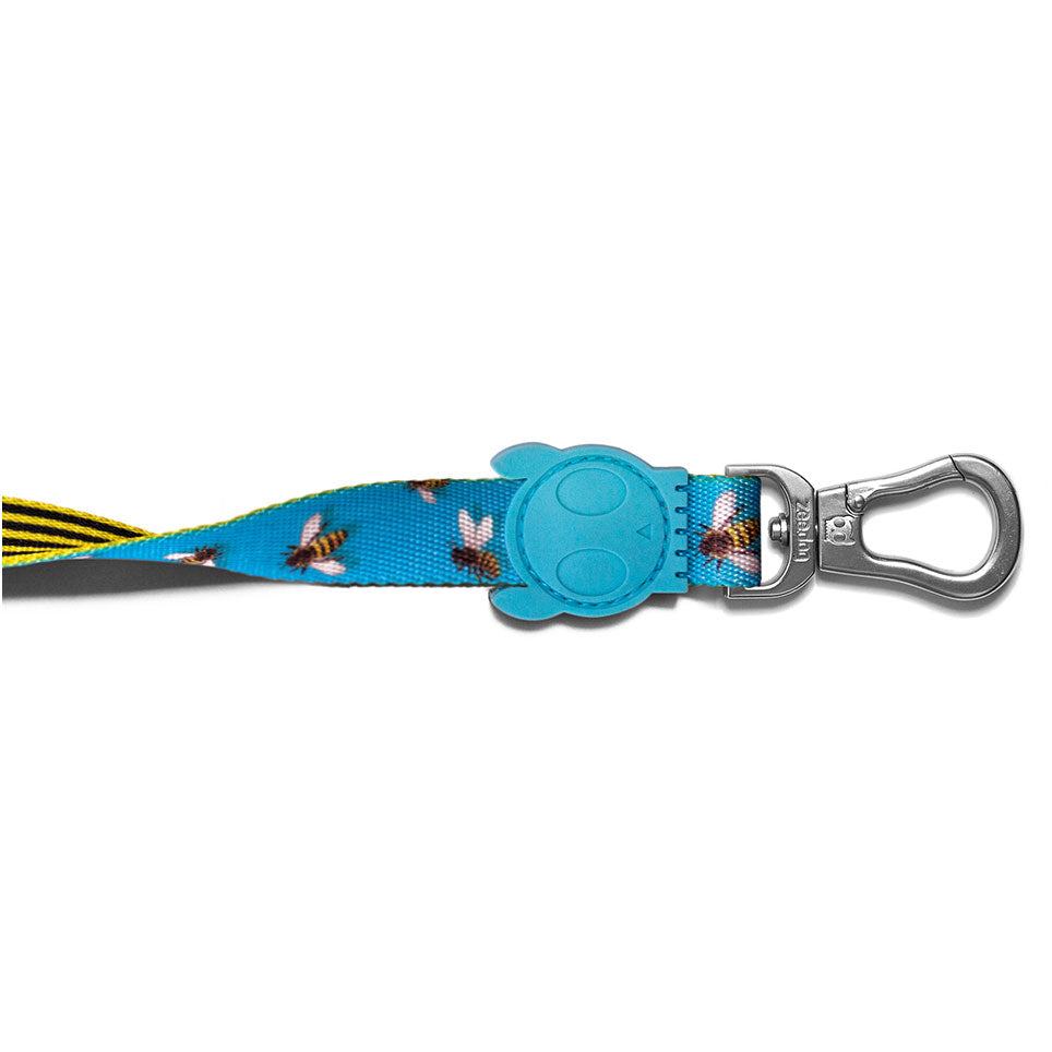 Bali the Dog ZeeDog Buzz Reversible Dog Leash, cool colourful pattern in blue and yellow, just love the insect details. Perfect for your dog!