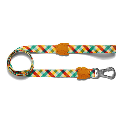 Zeedog Phantom Dog Leash from Bali the Dog, coolest dog gear from BalitheDog