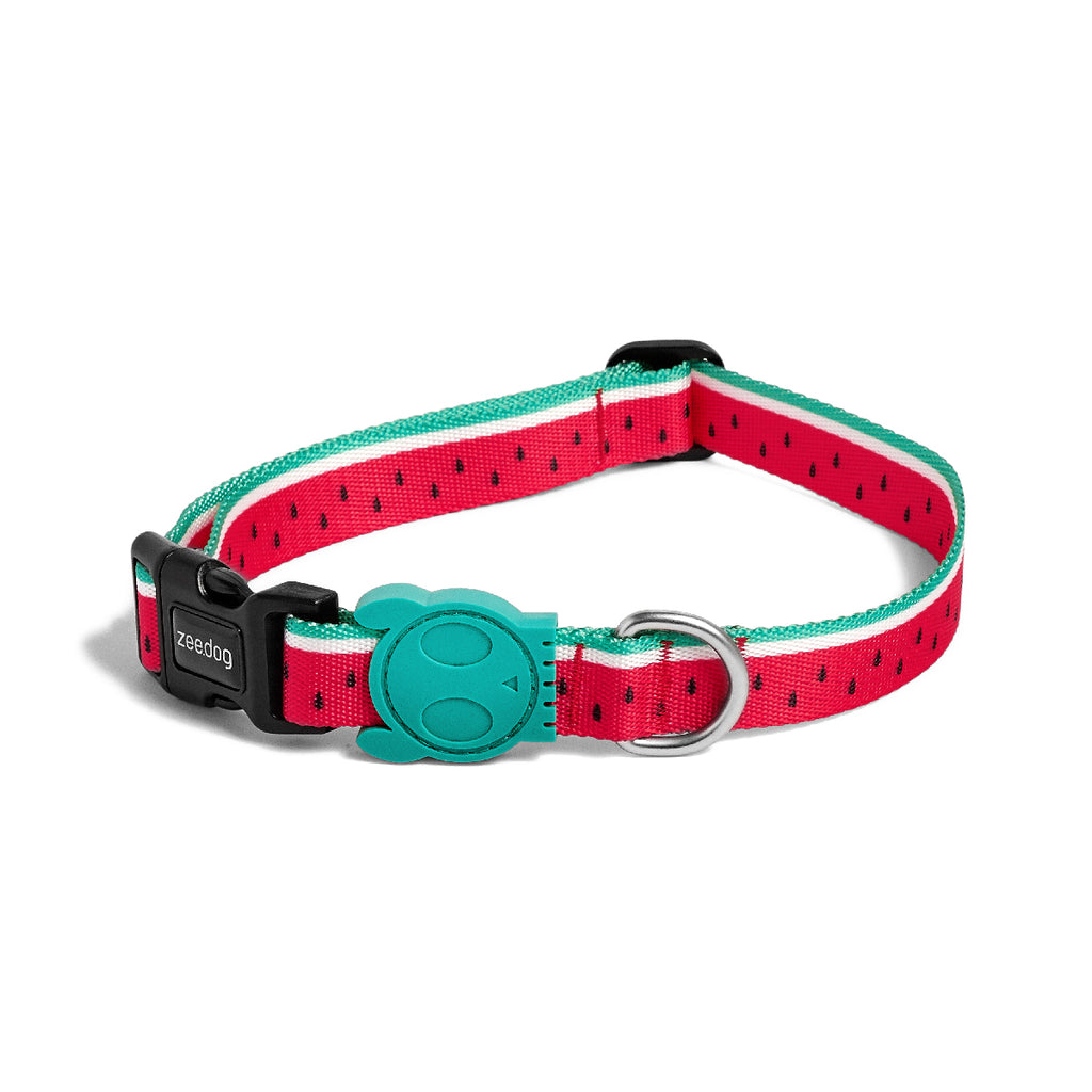 Zeedog Lola watermelon Dog Collar from Bali the Dog, coolest dog gear from BalitheDog