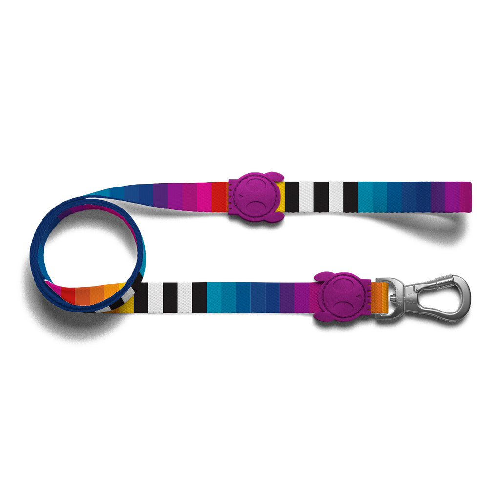 Zeedog Prisma leash from Bali the Dog. Coolest dog gear from BalitheDog, for all dogs and dog lovers.
