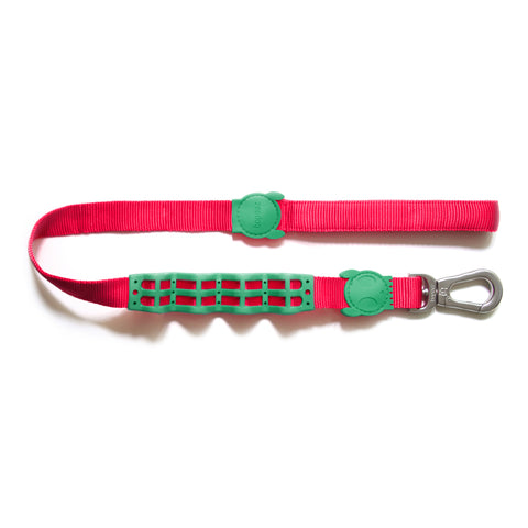 Zeedog Ruff leash from Bali the Dog with shock resistant effect. Coolest dog gear from BalitheDog, for all dogs and dog lovers.