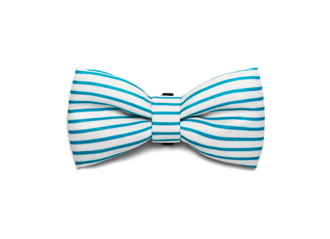 Bali the Dog Zeedog Helsinki Bow Tie for those James Bond moments or any party outfit or dog party. Cool dog gear!