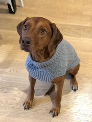 Bali the Dog cable knit sweater merino wool, dog clothes, BalitheDog, koiran villaneule, muotia koirille