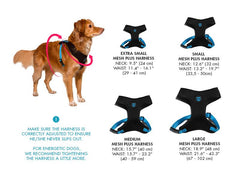 Size Chart for Bali the Dog ZeeDog Dog Air Mesh Harness in cool colourful design. We just love the design details. Perfect for your dog!