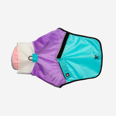Zeedog Bel Air raincoat from Bali the Dog, water resistant dog jacket, dog clothes, koiran sadetakki Bel Air ZeeDog balithedog, muotia koirille
