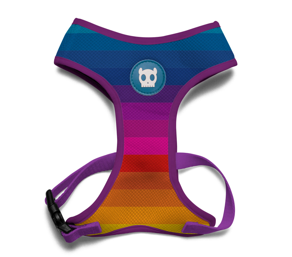 Zeedog Prisma Mesh Harness from Bali the Dog, coolest colours and best fit for your dog!