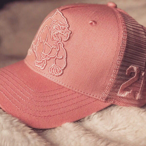 Image of Alpha Training Clothing Pink / Pink Alpha 21 Mesh Cap