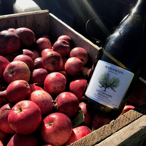 WIndswept Cider Organic Lost Orchard 2016 meet Lost Orchard Cider 2017