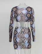Brown Snake Skin Two Piece Dress