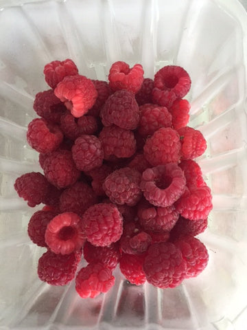 Fresh Raspberries - 1/2 PINT