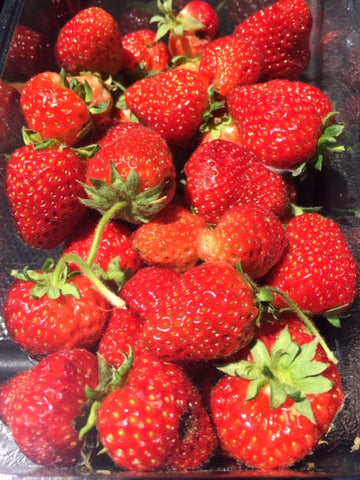 Fresh Strawberry - 1 LB