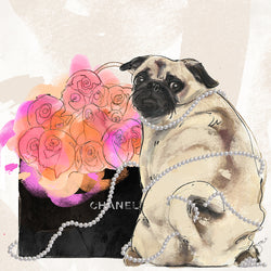 Pearls and Pugs - Studio One by Jodi Pedri