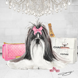 Pretty in Pink Shih Tzu - Studio One by Jodi Pedri