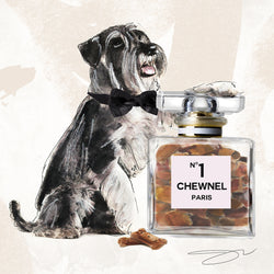 Such a gentleman Schnauzer - Studio One by Jodi Pedri