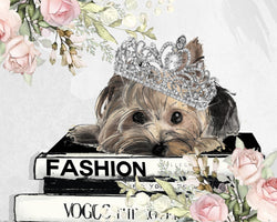 Yorkie Fashion queen