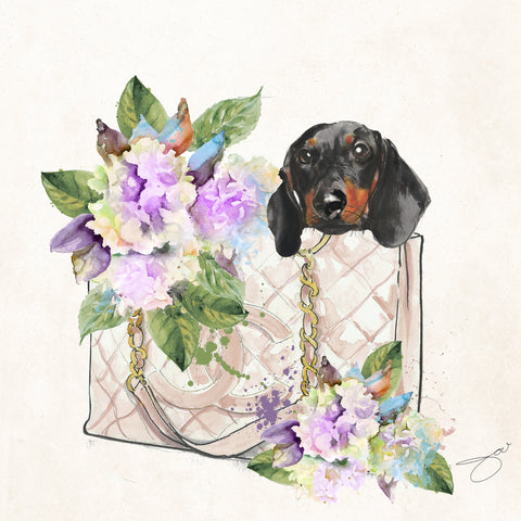 Let's go  dachshund - Studio One by Jodi Pedri