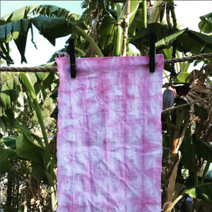 Cochineal Natural Dye Workshop
