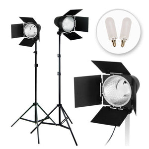 2Pcs Photo Video Studio Continuous Light Lighting Kit, Studio Barn