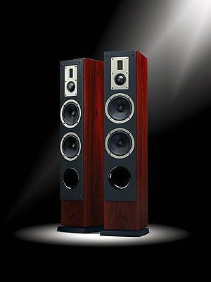 SWANS RM600F (Pair) Home Theater Speakers Free Shipping!!