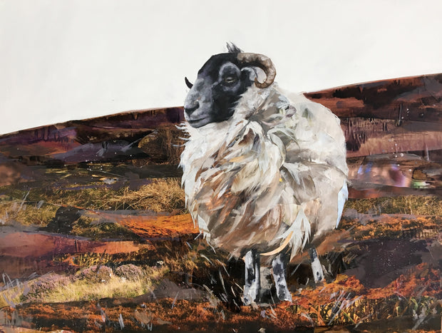 ram-on-Exmoor-collaboration-artwork-by-jacksonandyoung