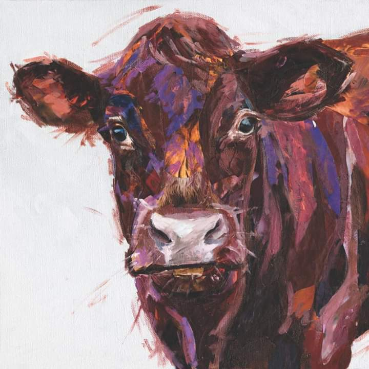 Devon-Red-Cow-artwork-Jackson-and-Young
