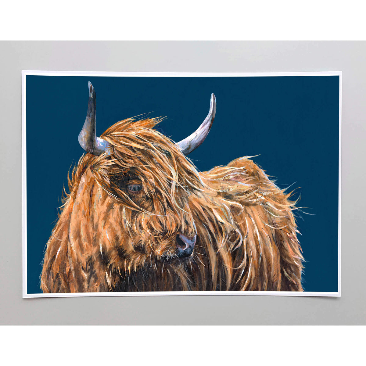 collaboration-art-of-highland-cow-jackson-and-young