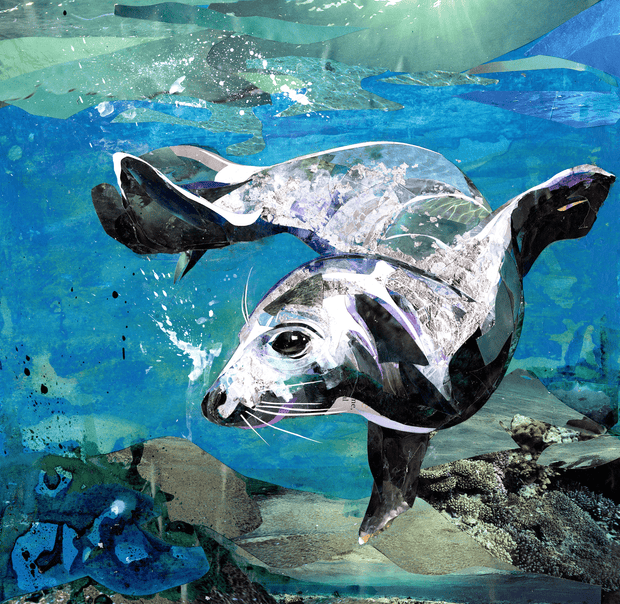 collage-artwork-of-seal-created-by-Sarah-Jackson