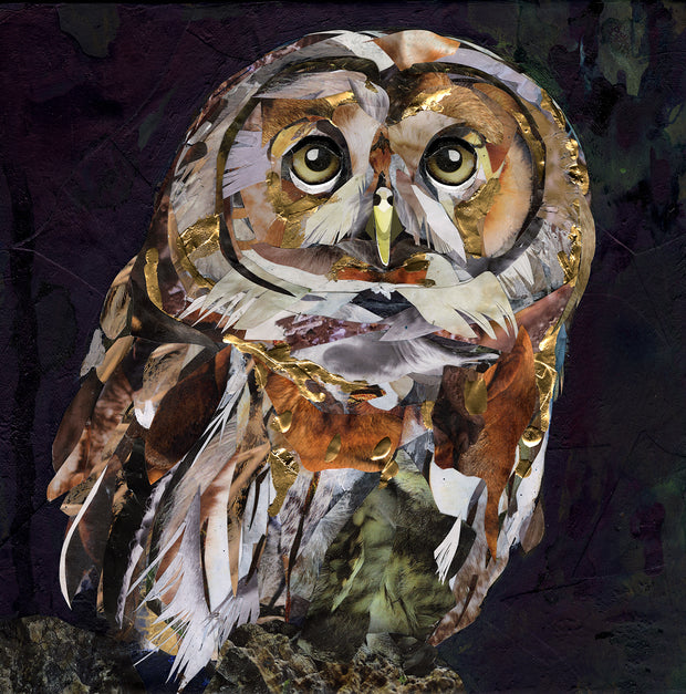 tawny-owl-artwork-in-collage-by-Sarah-Jackson