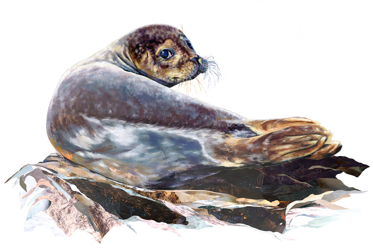 art-collaboration-of-a-seal-jackson-and-young