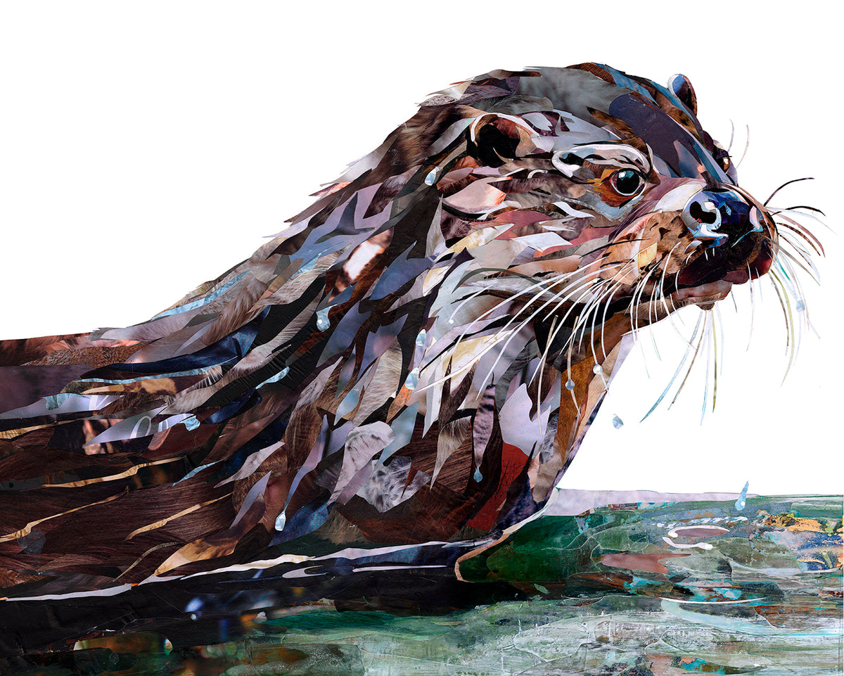 Tarquin-the-otter-artwork-Sarah-Jackson