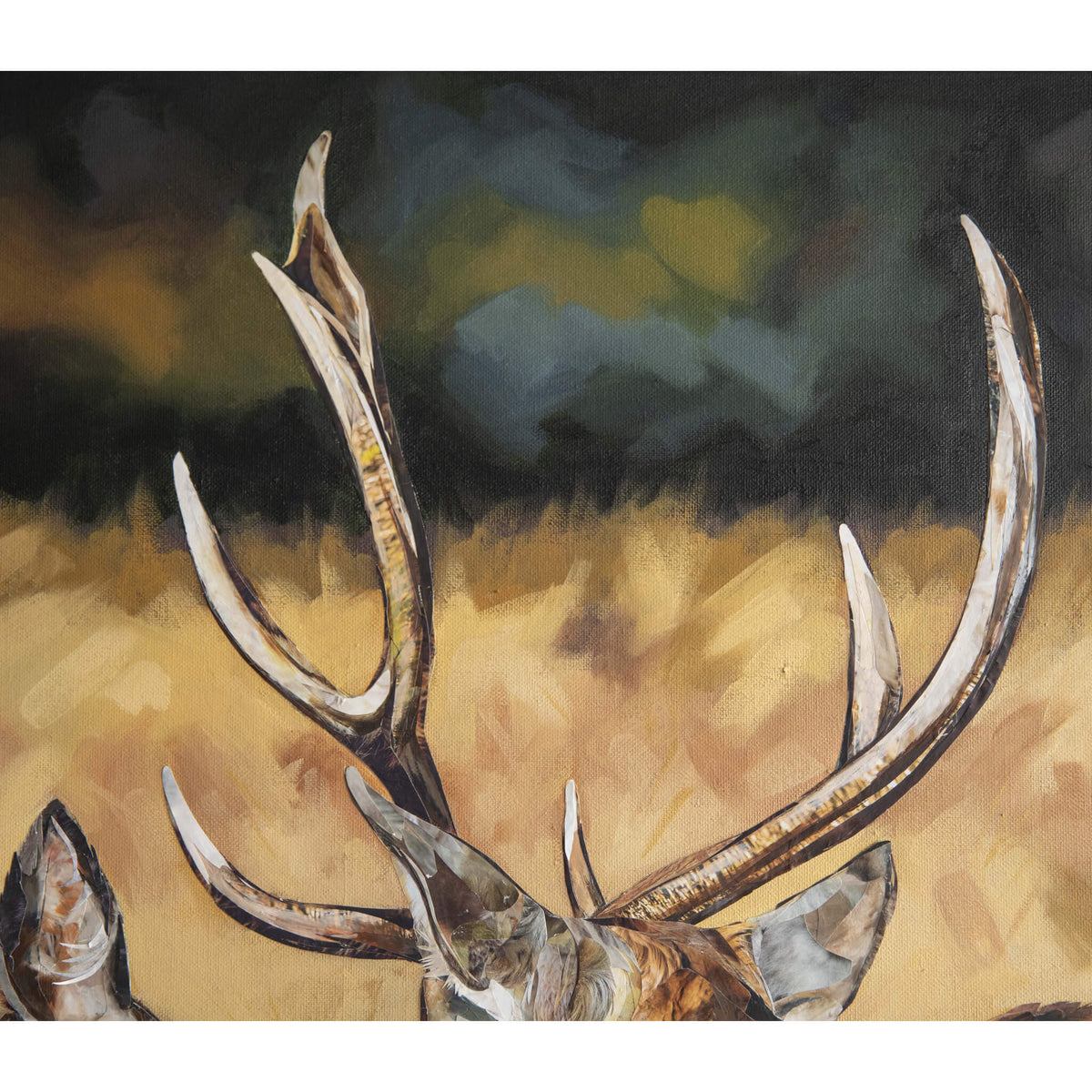 stag-deer-artwork-jackson-and-young