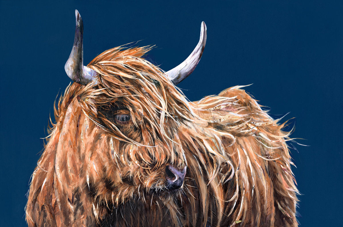 Highland-cow-artwork-collaboration-original-jackson-and-young