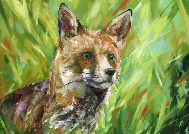 """Inquisitive Red Fox"""
