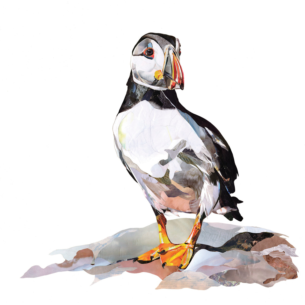 puffin-collage-artwork-Sarah-Jackson